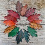 Leather oak leaf barrettes with color names