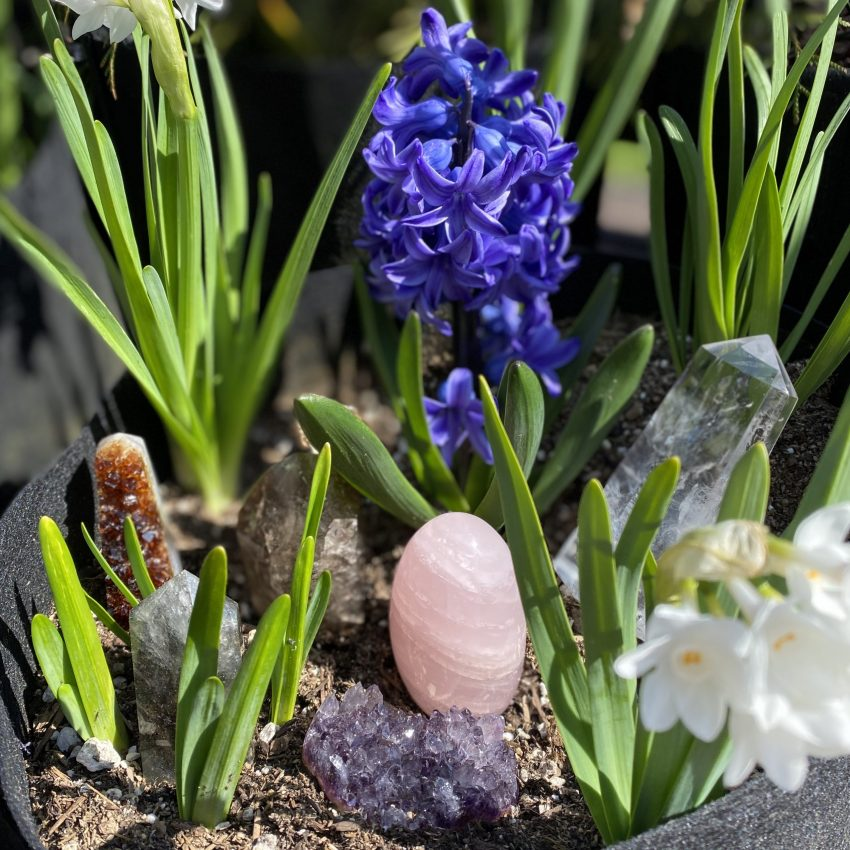 quartz crystals and flowers